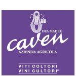 caven_300